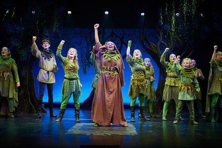 Robin Hood De grønklædte